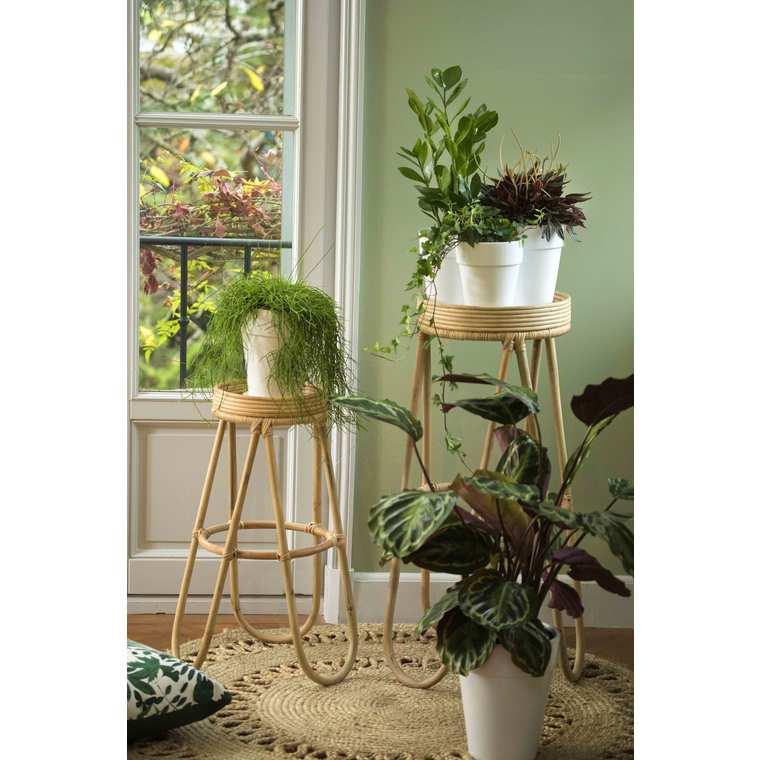Terreau plantes d'intérieur 15 L 386926