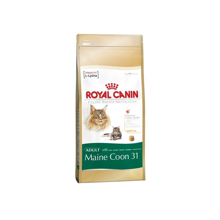 Croquette chat 10kg Maine Coon Royal Canin