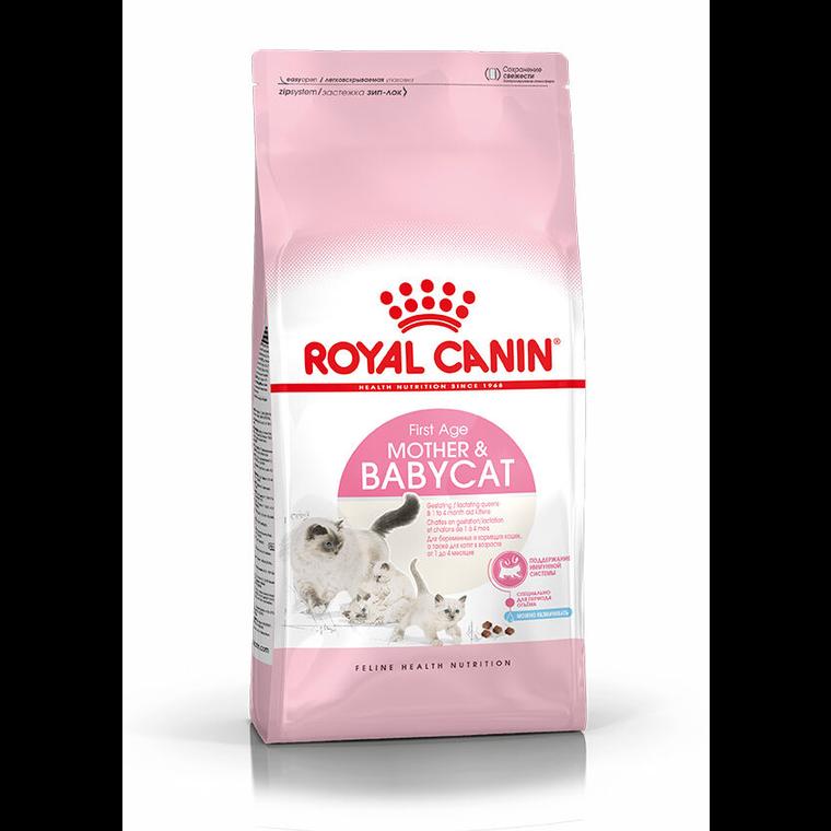 Croquette 2kg chaton 1er âge Royal Canin 395269