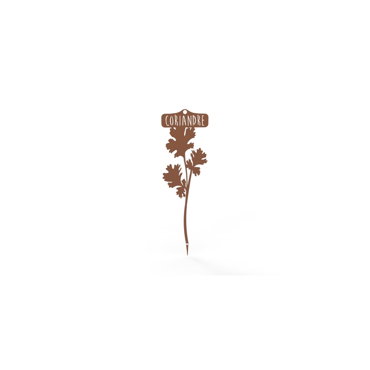 Étiquette Coriandre 22,3 cm 398353