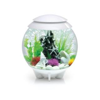 Aquarium BiOrb Halo 30 L à led blanc Ø 40 x H 46 cm 400092