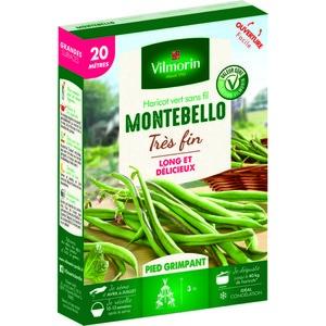 Semences pour haricot nain de la variété montebello - 20 m 400188