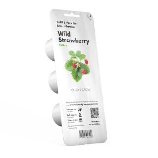 Lot de 3 recharges de graines de fraises sauvages pour smart garden 402421