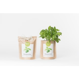 Grow bag de basilic bio 300 g 402423