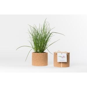 Grow cork de ciboulette bio 450 g 402441