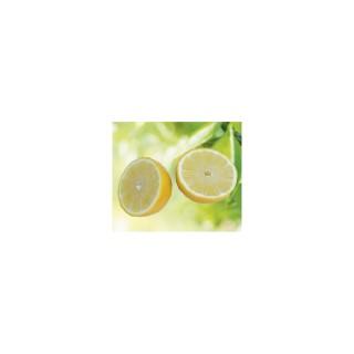 Lime Orientale bio. Le pot de 3 litres 405443
