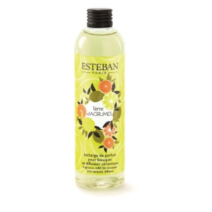 Recharge de parfum terre d'agrumes en flacon de 250 ml 405816