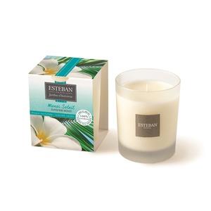 Bougie décorative parfumée monoï soleil rechargeable 10 x 7,5 cm 405820