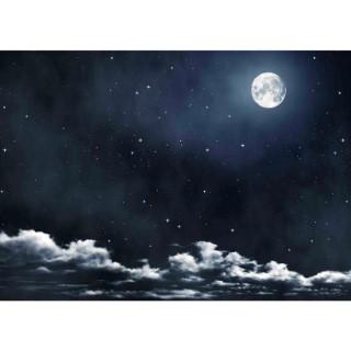 Toile de fond ciel avec la lune 407482