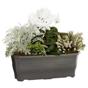 Jardinière d'extérieur de 40 cm mélange blanc et vert  414730