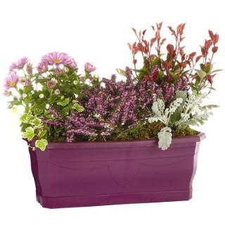 composition d'extérieur mélange violet rose. La jardinière de 40 cm 414744