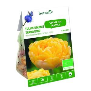 Bulbe tulipe double yellow pomponette jaune bio botanic® x 8 414775