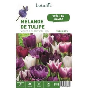 Mélange de bulbes tulipes violettes et blanches botanic® x 15 414787