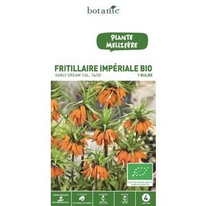 Bulbe fritillaire early dream orange bio botanic® 414800