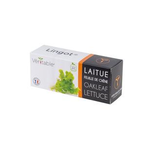 Lingot Laitue feuilles de chêne Bio 415047