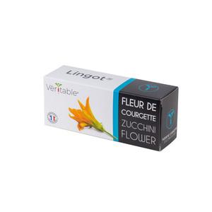 Lingot Fleurs de Courgette Bio 415060