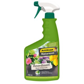 Antichlorose reverdissant en spray de 750 ml 416323