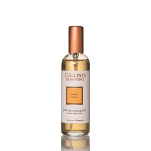 Parfum d'Intérieur Ambre – 100 ml 417086