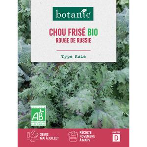 Graines de Chou frisé rouge de Russie bio en sachet 419327