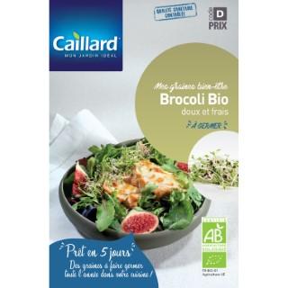Graines de Brocoli à germer bio en sachet de 50gr 419373