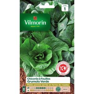 Graines de Chicorée à feuilles Grumolo Verde en sachet 419444
