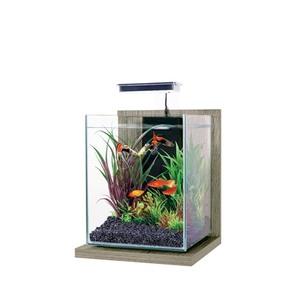 Kit aquarium Jalaya 9,3 L avec support bois zebrano gris 22x23X34,5 cm 419503