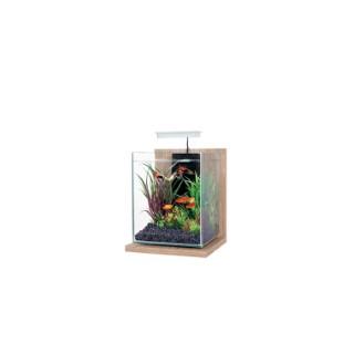 Kit aquarium Jalaya 9,3 L avec support bois bambou beige 22x23X34,5 cm 419513