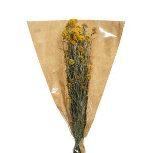 Fleurs séchées nature 50 cm 420976