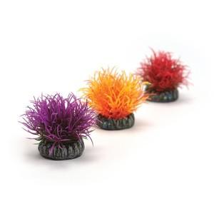 Décoration aqua x3 boules colorées biOrb 441496