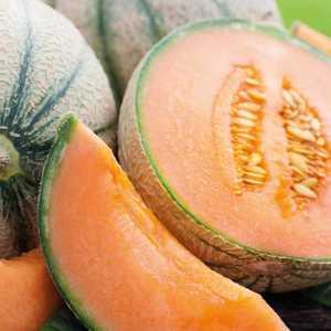 Melon Brodé Charentais Jenga bio. Le pot compostable de 10.5 cm 447498