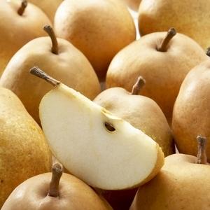 Poirier Delbard D'Automne ®Delsanne forme palmette UD 45193