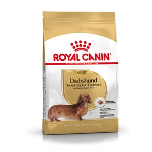 Croquette 1,5kg Teckel adulte Royal Canin 467066