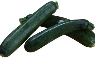 Courgette bio d'Espagne - Filet de 1kg 46921