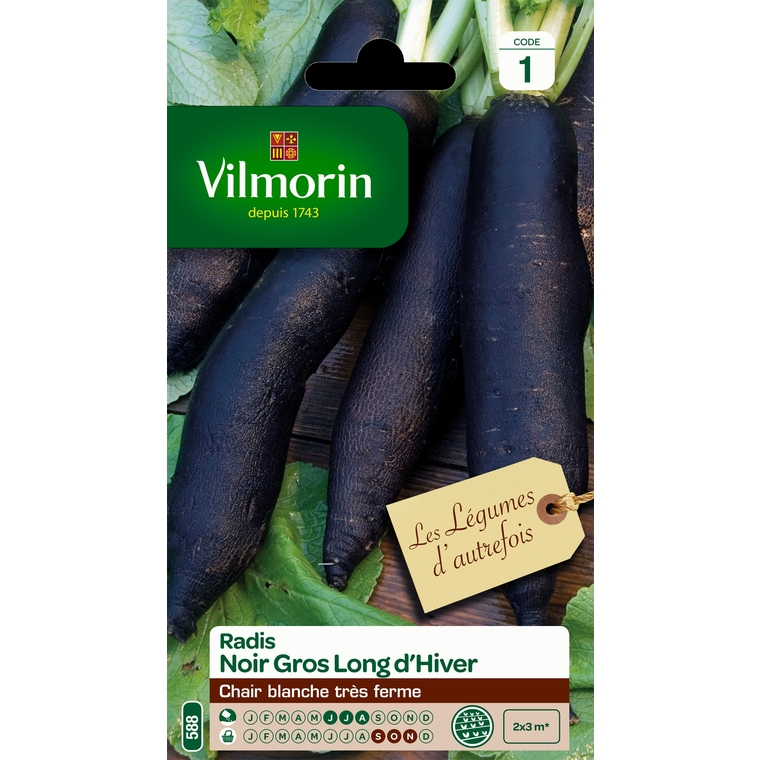 Semences pour radis noir de la variété gros long d'hiver - 1 m 400157
