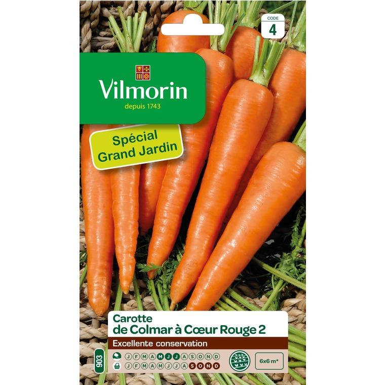 Semences pour carotte de la variété Colmar à cœur rouge - 4 m 400164