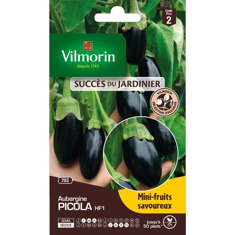 Semences pour aubergine hybride de la variété picola - 2 m 400165