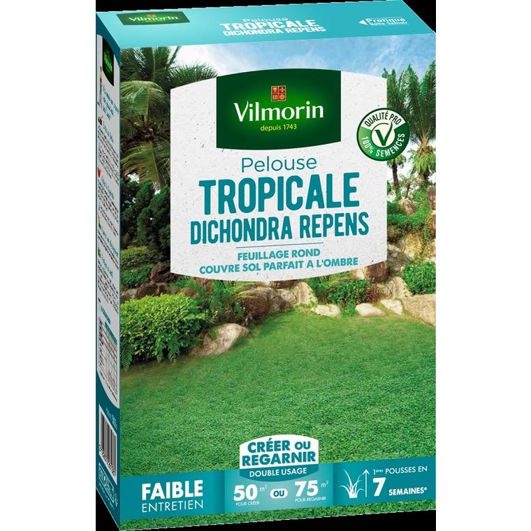 Pelouse tropicale dichondra repens 500 g 400216