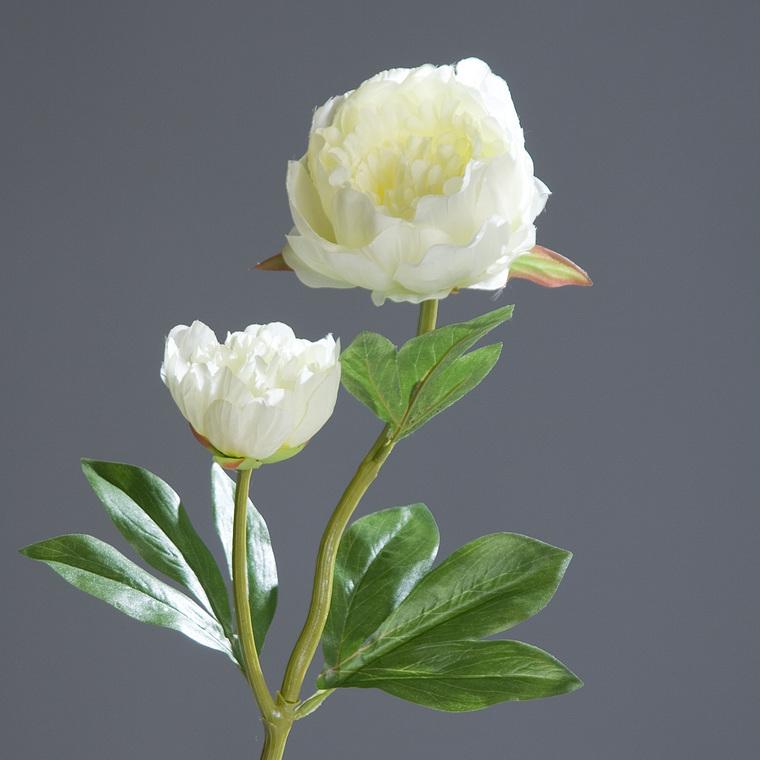Pivoine 2 fleurs 60 cm 400308