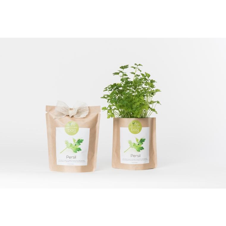 Grow bag de persil bio 300 g 402424
