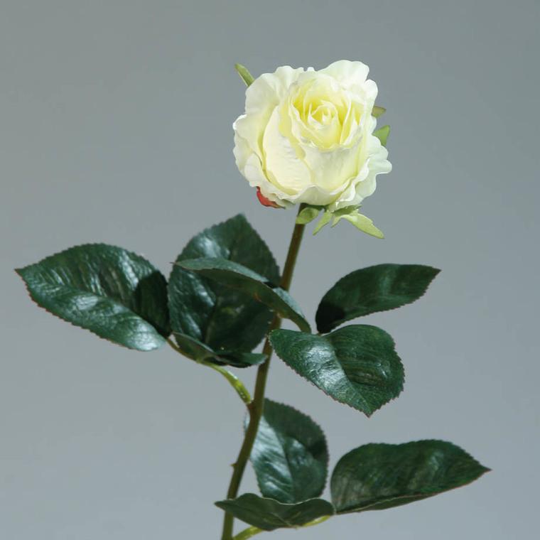 Rose colombienne artificielle 169081