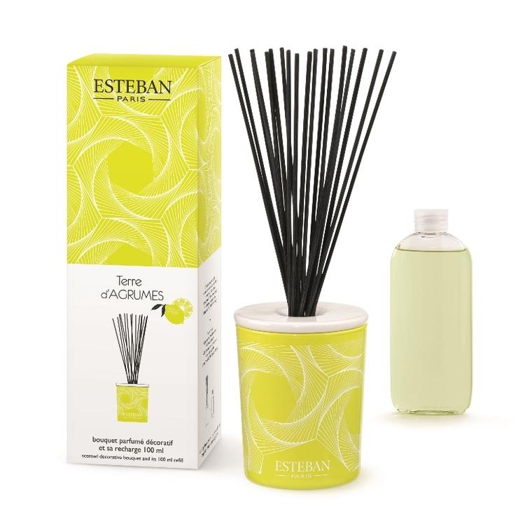 Bouquet parfumé et sa recharge Terre d'agrumes 100 ml 405813