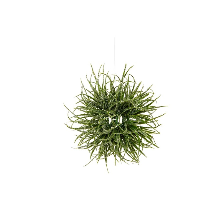 Boule d'hamamélis couleur vert et glace Ø 10 cm 409801