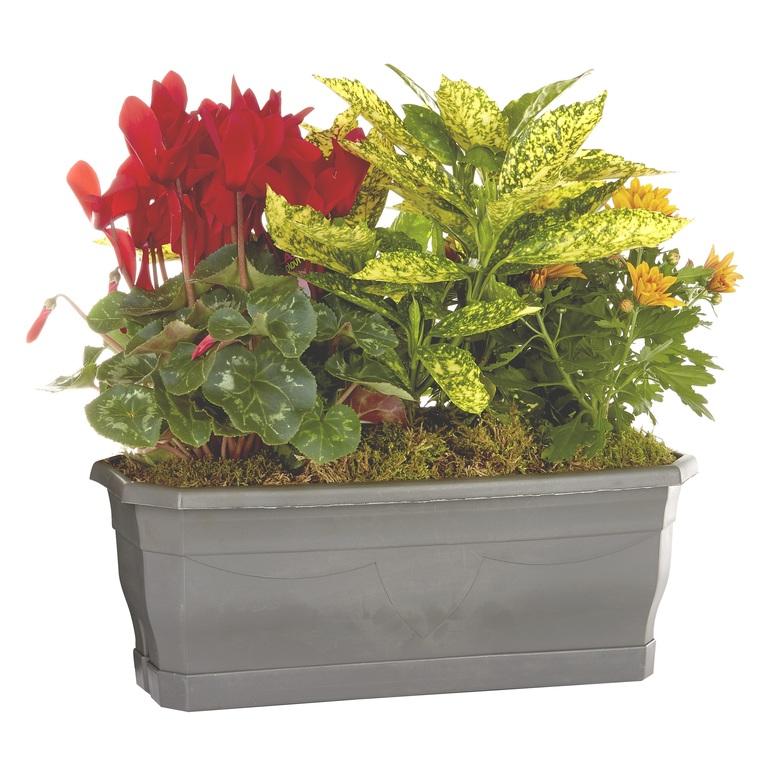 Composition d'extérieur en jardinière de 40cm mélange orange rouge 414737