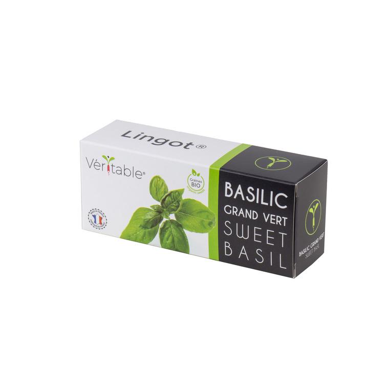 Lingot Basilic Grand Vert Bio 415027