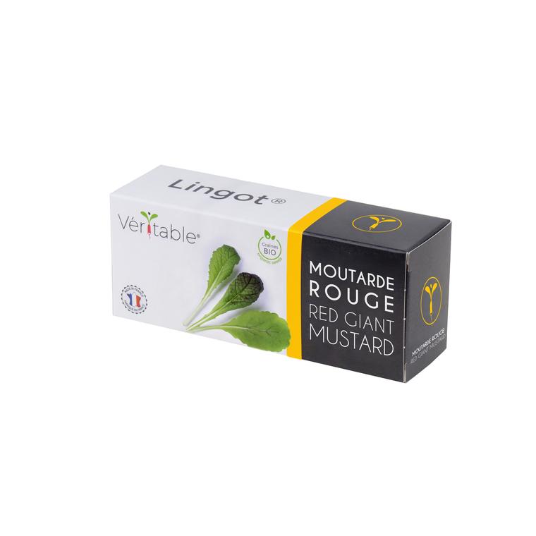 Lingot Moutarde rouge bio 415038