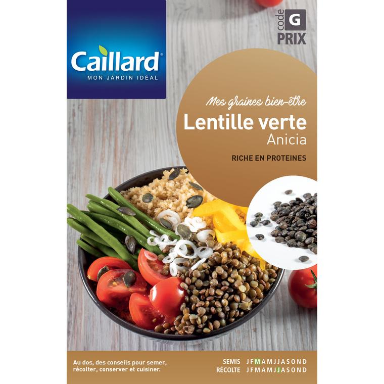 Graines de Lentille verte Anicia en sachet 419355