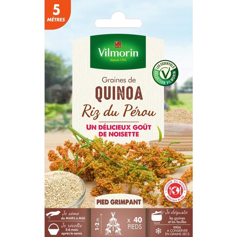 Graines de Quinoa en sachet 419419