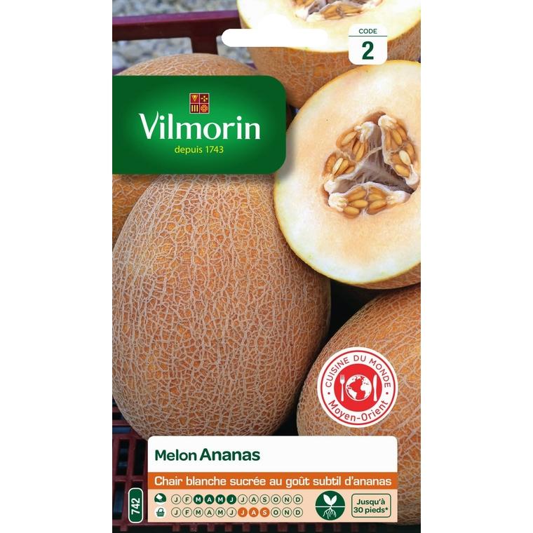 Graines de Melon ananas d'Amérique en sachet 419423