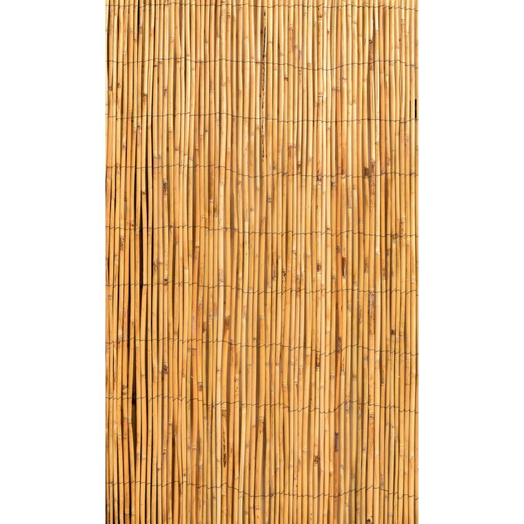 Canisse en roseaux fendus 500 x 200 cm 419660