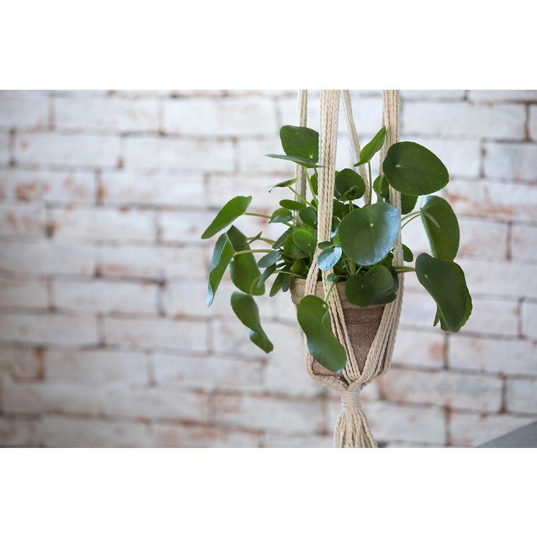Support de plante en macramé 30x130 cm 421477